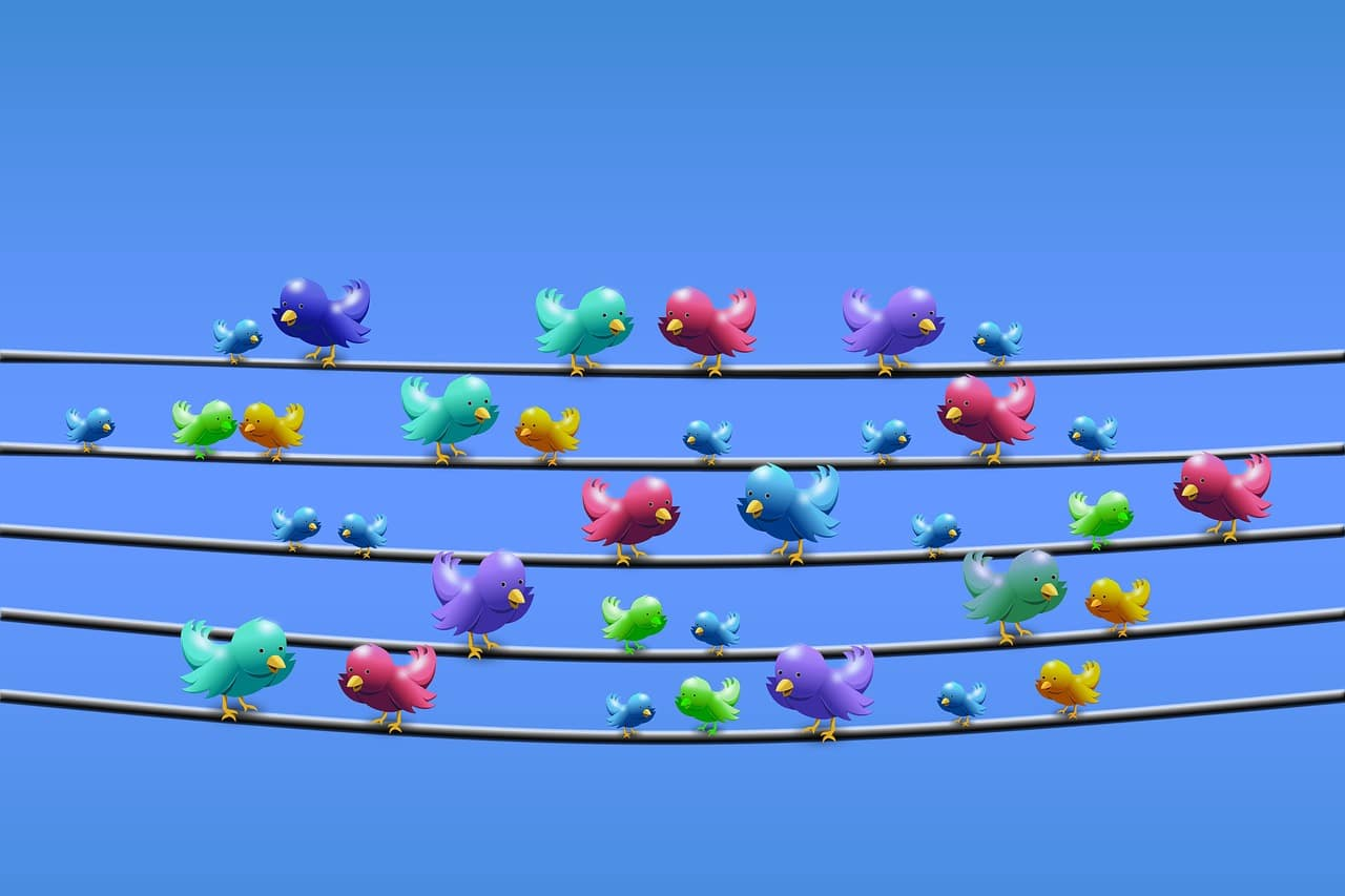 Meilleurs sites pour acheter des followers Twitter