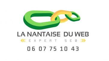 Agence SEO France