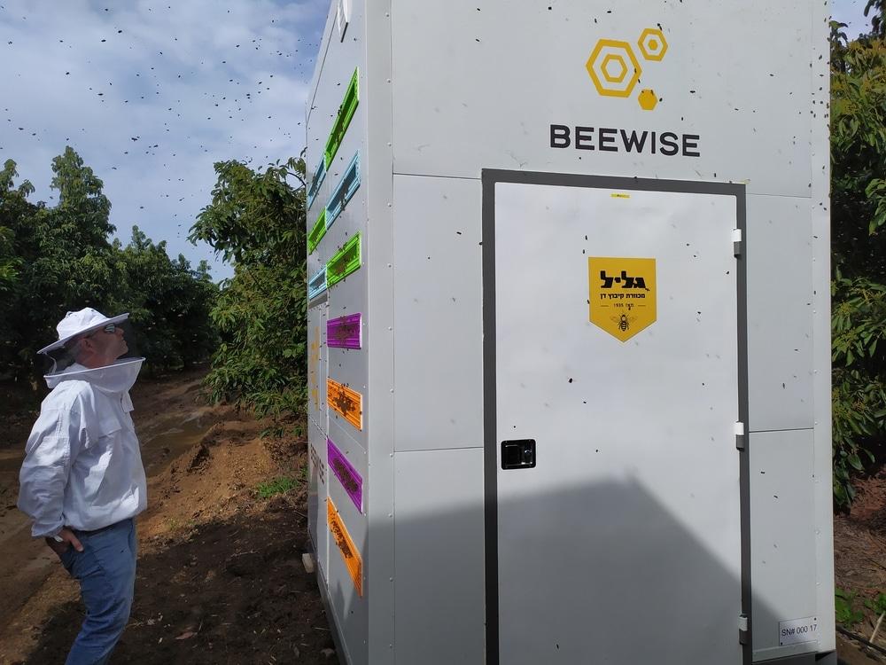 ruches robotisées avenir de apiculture